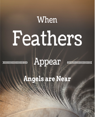The Feather On My Path